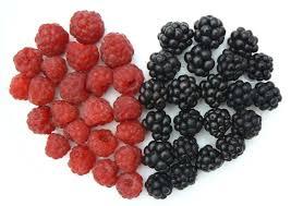 The Health Benefits Of Polyphenols For Diabetics: